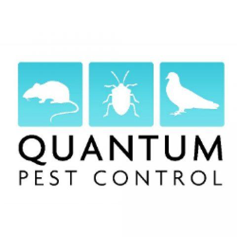 Quantum Pest Control